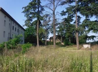 Agenzia immobiliare Ledri - Terreno Commerciali in vendita